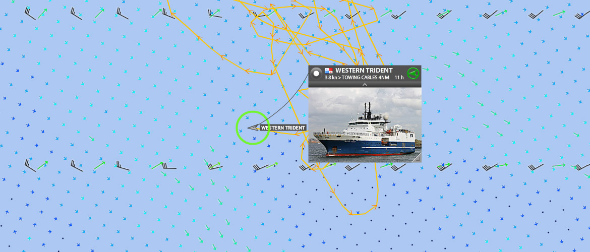 Search for any vessel and inspect position and track.