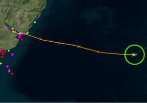 Boundless vessel tracks captured by satellite AIS